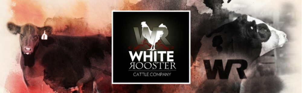 White Rooster Cattle Company